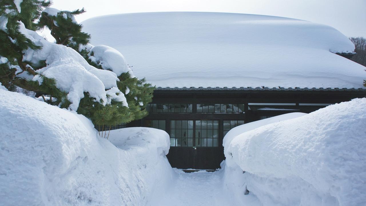 冬天的小樽積雪比人高。